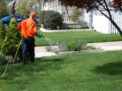 lawncare-service